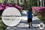 Gwinnett Gems