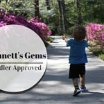 Toddler-Friendly Parks: Discovering Gwinnett's Hidden Gem