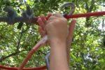Zip Lines - Belay Hands