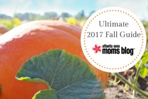 The Ultimate 2017 Fall Guide