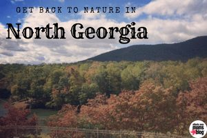 Get back to nature in North Georgia