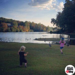 kids chasing geese by mountain lake