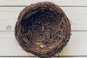 She's Leaving the Nest: How to Make it a GOOD Thing