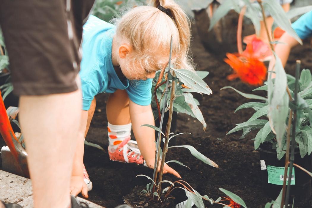 YWhere to Volunteer with Kids in Atlanta