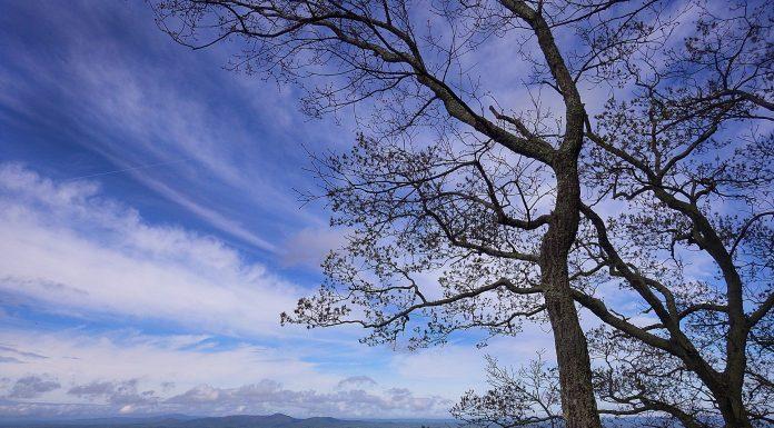 North Georgia Favorite Places in Nature