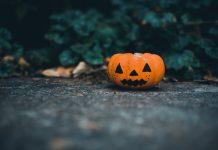 Atlanta Fall Guide :: Festivals, Fairs, and Events