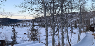 A Dude Ranch Vacation: The Perfect Trip for Parents with or without Kids