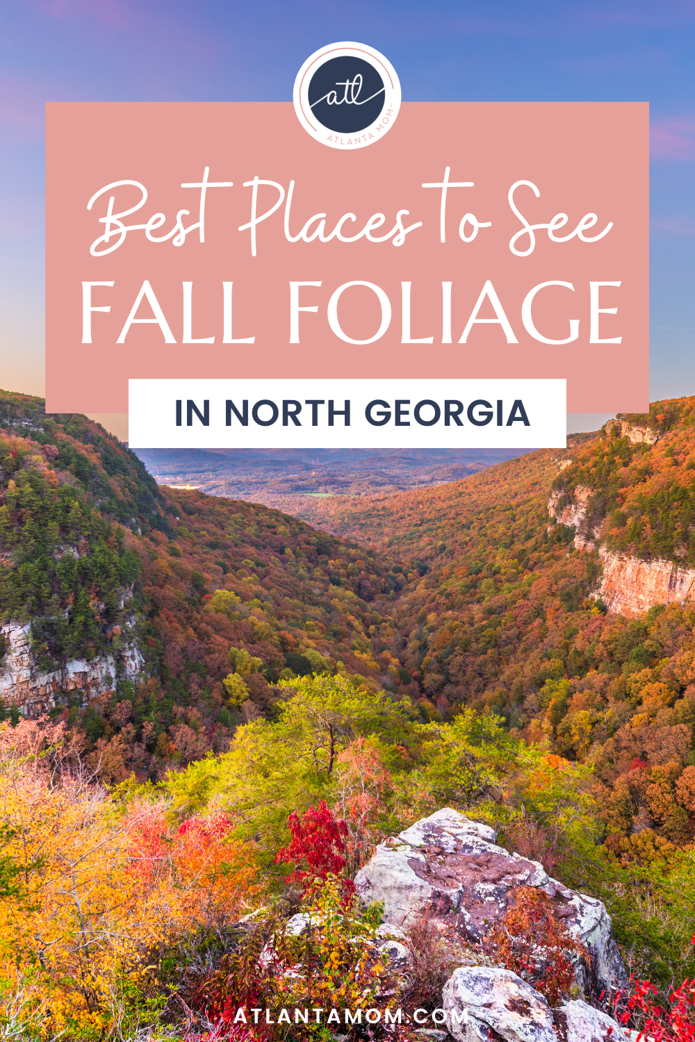 Best Places to See Fall Foliage in North Georgia