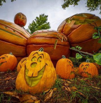 Dollywood Harvest Festival
