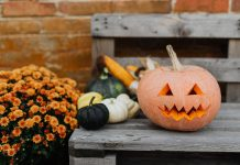 Boo! :: Halloween Fun for the Whole Family